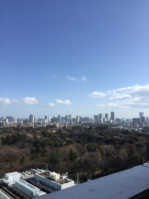 View of Tokyo from Takashimaya2