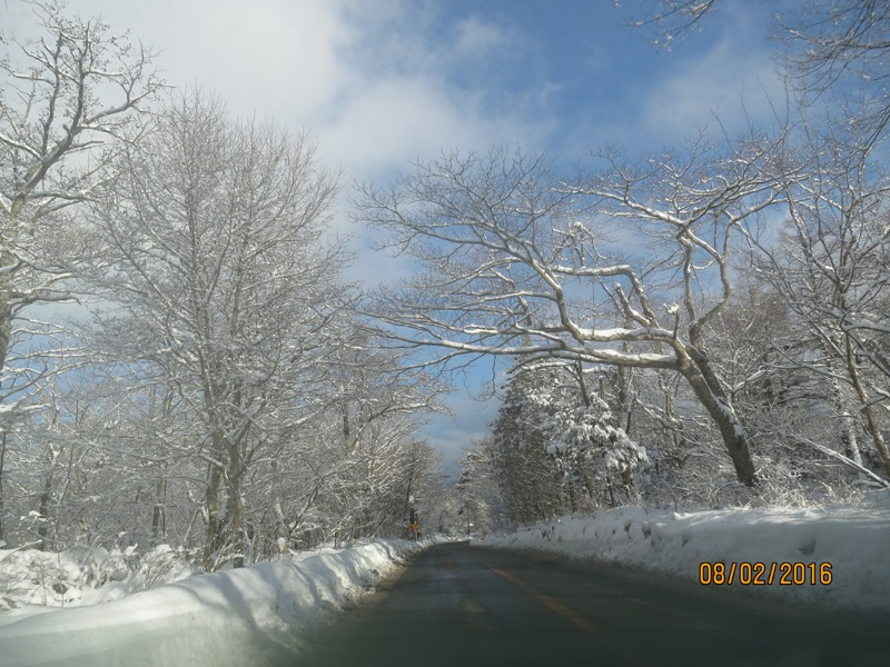 Drive to Yamanakako9