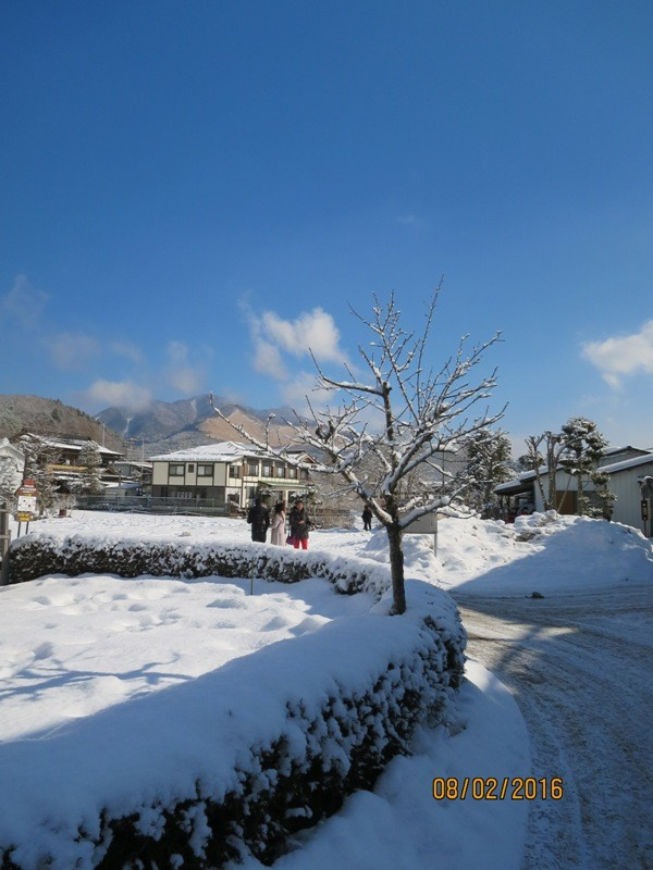 Oshino Hakkai - walk to Shobuike