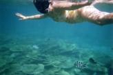 Belle Mare Snorkel08