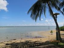 Bintan ferry terminal view1