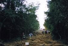 Climb up Phnom Bakheng