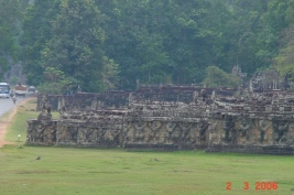 Elephant terrace2