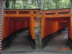 Fushimi Inari09