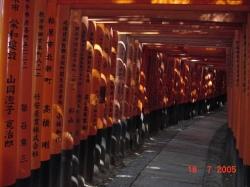 Fushimi Inari12