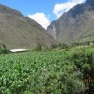 Inca rail views7