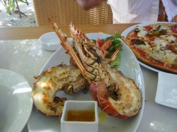 Lobster Lunch1