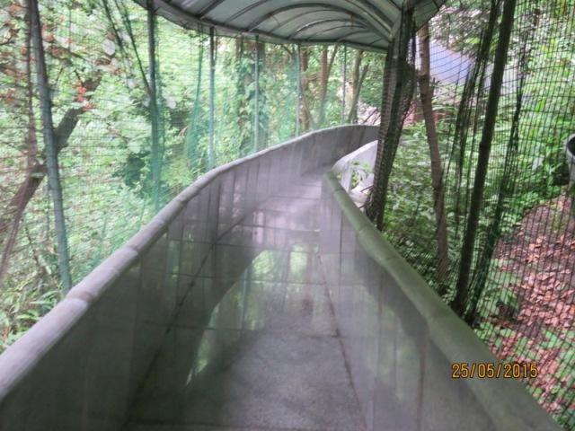 Slide down Laodaowan2