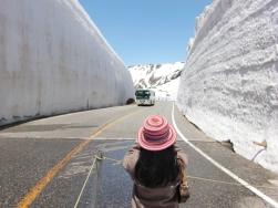 Tateyama snowall19