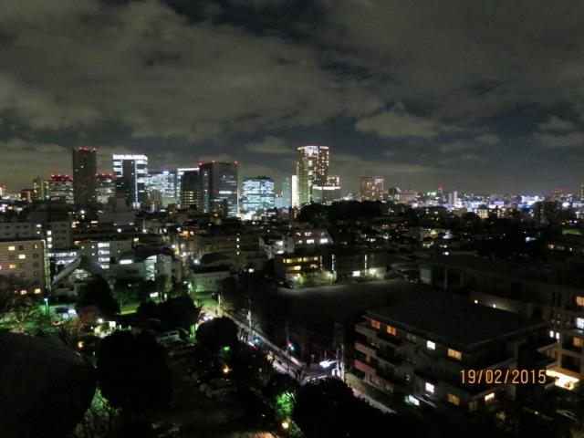 Tokyo night 1