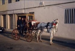 Valetta Horse cart2