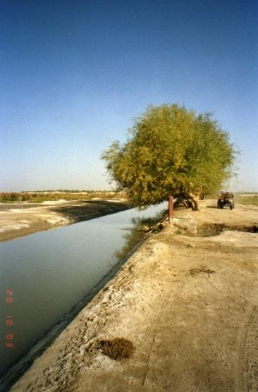 Xinjiang008