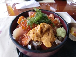 Izubeer Sashimi4