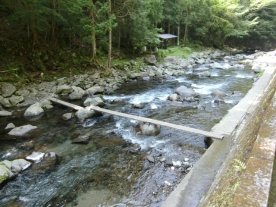 Joren Falls13