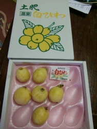 Pipa Fruit