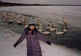 White Swans 02