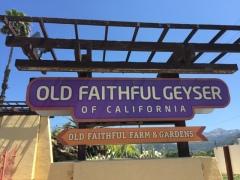 Old Faithful Geyser59