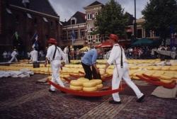 Alkmaar3