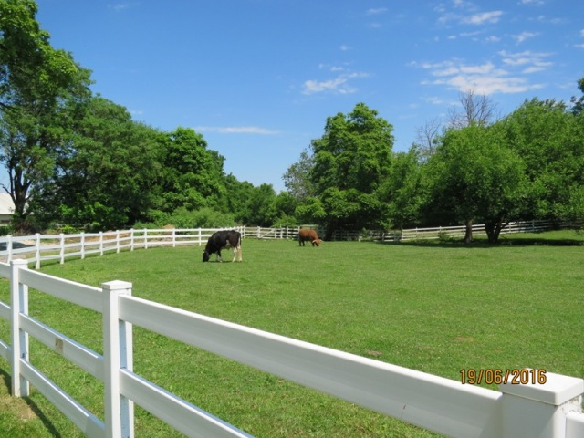 Amish Village Farm area21