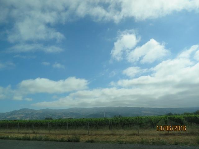 Drive to Napa4