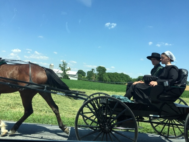 Local Amish in Buggies17