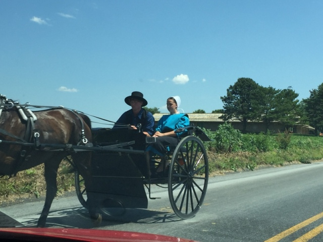 Local Amish in Buggies34