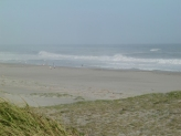 Nakatajima sand dunes8