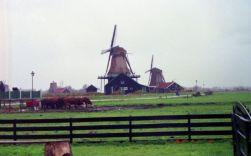 Netherland002