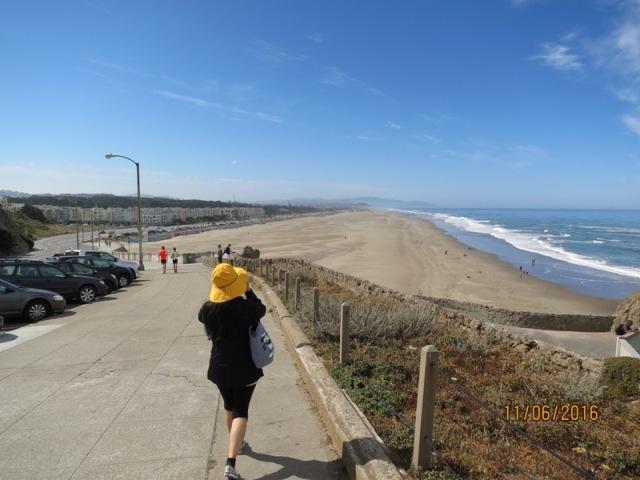 Ocean beach view1