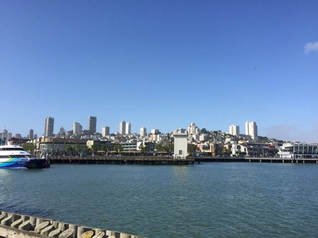 Pier 41 view 29