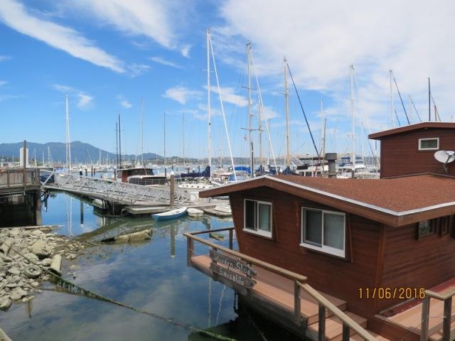 Sausalito Pelican harbor4