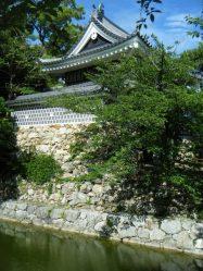 Taihara Castle18