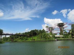 Dragonfly island3