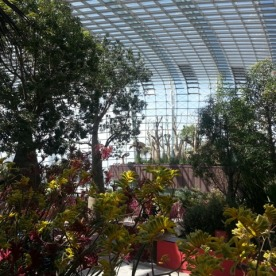 Flower Dome16