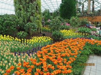 Flower Dome4