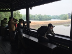 Main Hide lookout