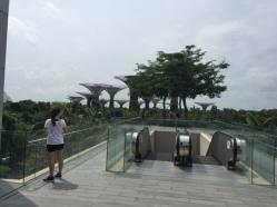 Marina Overpass2