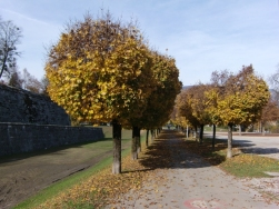 Solothurn defense wall7