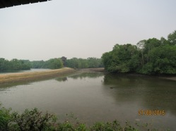 View from main hide1