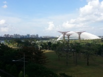 View from MBS bridge1