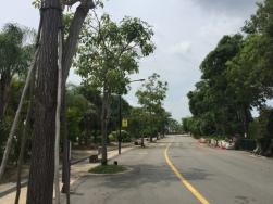 Walk along Marina channel2