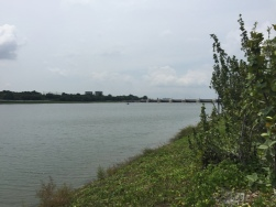 Walk along Marina channel3