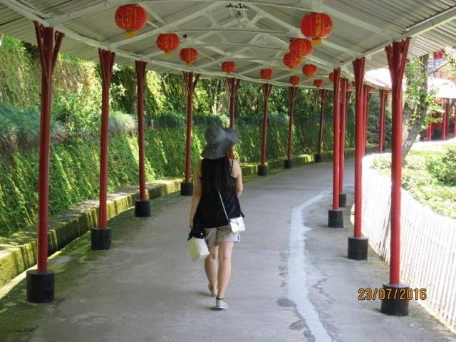 Zhinan temple6