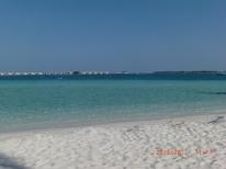 AM Beach walk8