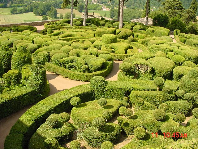 Green gardens, even inwinter!