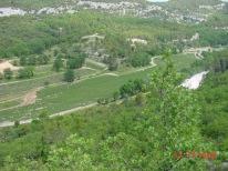 abbaye-senanque02