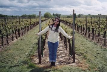 bernardwiller-vineyards4