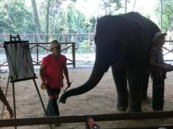 elephant-show4