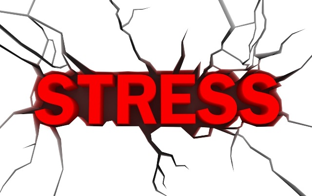 stress with Travel