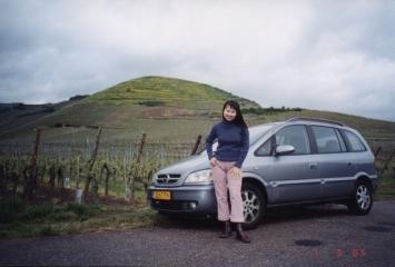 turckheim-ribeauville-vineyards01
